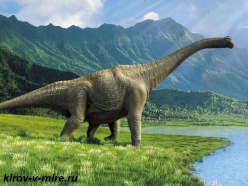 Котельнич парк Динозавры на Вятке