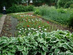 Ботанический сад Киров фото