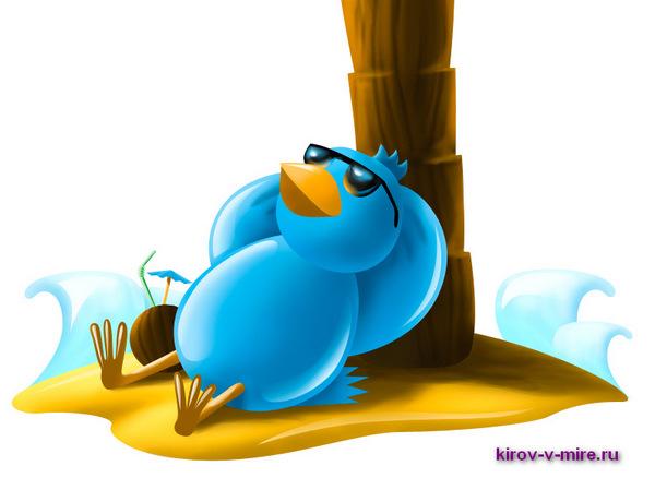 Кировские твиттеряне