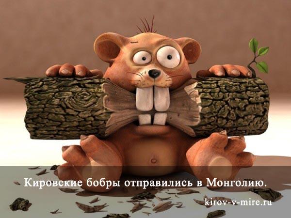Кировские бобры отправились в Монголию