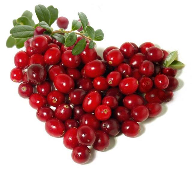 Пермяки будут садить ягоды в Кировской области