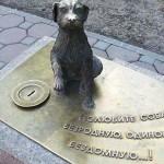 В Кирове появится памятник бездомной собаке?