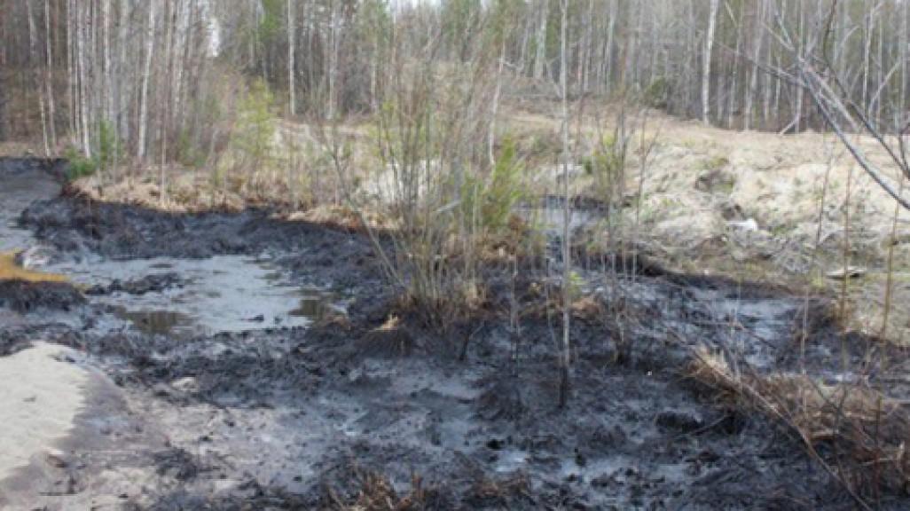В Кировской области случился разлив мазута – ущерб уже превысил 190 тыс. рублей