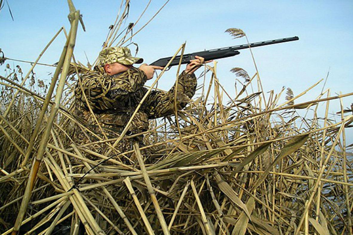 Весенний охотничий сезон собираются отменить