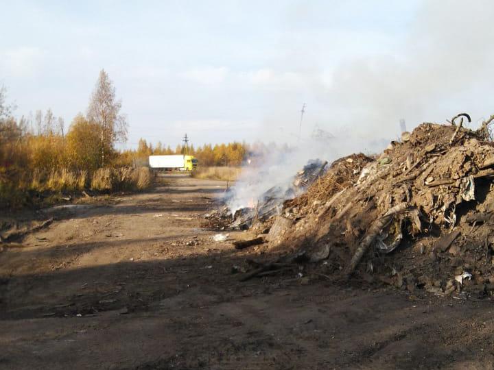 Свалка в Котельниче не дает местным жителям дышать полной грудью
