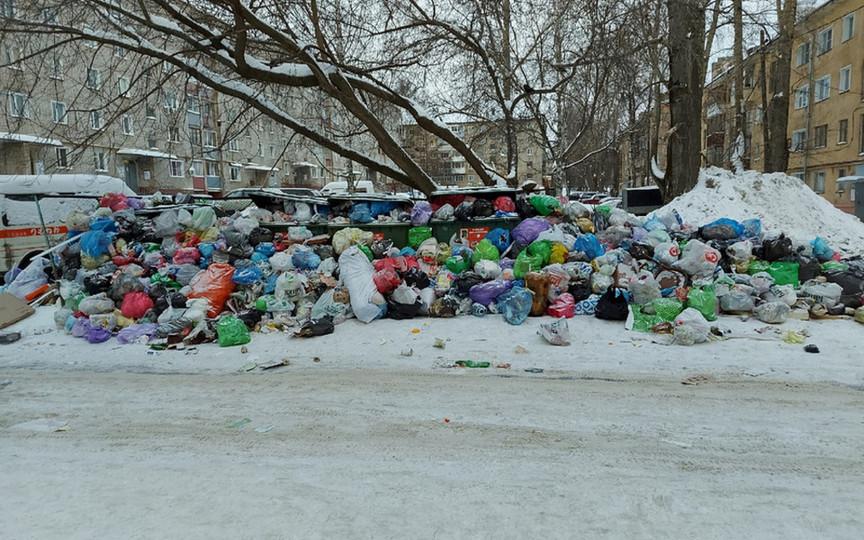 Депутаты будут расследовать мусорный коллапс